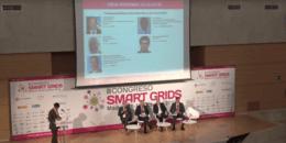 Interoperabilidad y Normalización de las Smart Grids