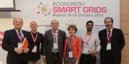 Perfiles profesionales para las Smart Grids. Necesidades y Oportunidades