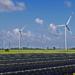 La generación eléctrica renovable crece 4,2 puntos respecto a 2015
