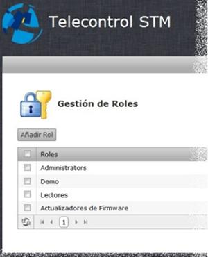 Figura 3. Roles de la Gestión.