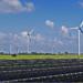 3.000 MW renovables serán subastados en la nueva convocatoria aprobada por el Gobierno