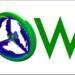 SOWE 2017 analiza en Pamplona las aplicaciones de OpenFOAM en la eólica