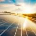 La energía solar fotovoltaica creció un 50% en el último año, según la IEA