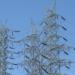 Nueva plataforma de control de Redes Eléctricas de Indra que permite al consumidor gestionar su Autoconsumo