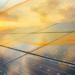Las infraestructuras fotovoltaicas de calidad aseguran un mercado fuerte y de confianza