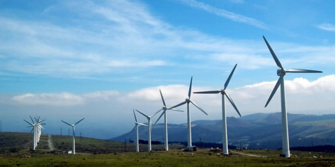 Los 22 adjudicatarios de la primera subasta de renovables presentan 165 proyectos al MINETAD