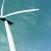 El CEEC considera la necesidad de realizar reformas para alcanzar una economía descarbonizada