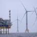 Iberdrola construirá dos parques de energía eólica marina de 486 MW en aguas alemanas del Báltico