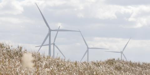 Siemens Gamesa suministrará 22 aerogeneradores para dos proyectos eólicos en Japón