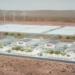 La empresa australiana de almacenamiento de energía 1414 Degrees se estrena en Bolsa
