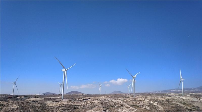 Parque eólico en Canarias.