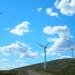 La AEE asegura que el precio del mercado eléctrico se redujo en octubre un 8,7% gracias a la contribución de la eólica