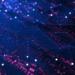 Primera financiación sindicada multidivisa con blockchain para afrontar los retos de la digitalización de la energía