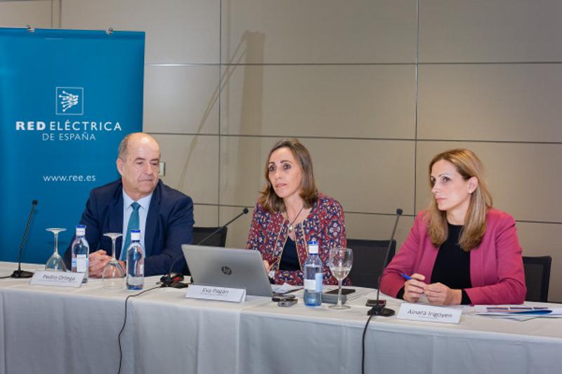 Rueda de prensa de Red Eléctrica de España para anunciar la finalización de la construcción de las infraestructuras necesarias para el Plan Eólico Canario.