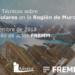 Jornada sobre plantas solares para empresas interesadas en proyectos fotovoltaicos en la Región de Murcia