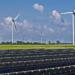 El BOE publica las bases reguladoras de las ayudas a instalaciones renovables en territorios insulares