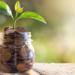 La financiación verde permite a Red Eléctrica reducir su margen de crédito sindicado