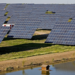 Acciona suministrará energía de origen 100% renovable a Telefónica durante 2019