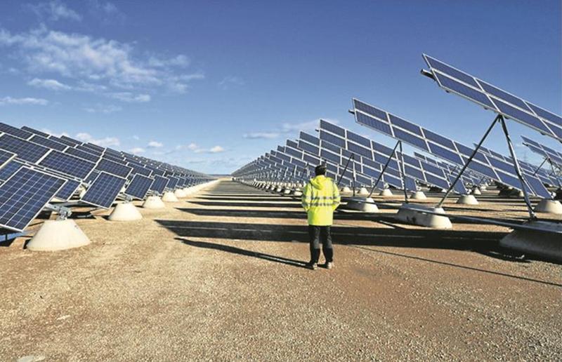 Parque fotovoltaico con operario.