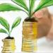EnerInvest publica la II Edición de la Guía para la Financiación de Proyectos de Energía Sostenible
