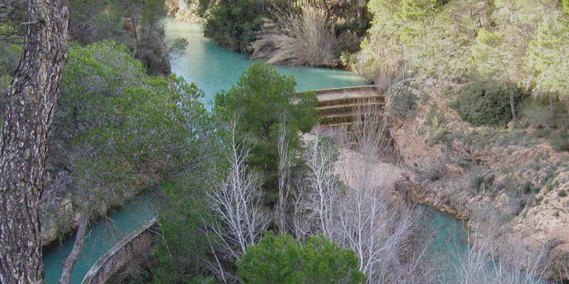 La central hidroeléctrica de Tranco del Lobo, en Albacete, es una de las que plantas renovables que los clientes pueden seleccionar para adquirir su energía limpia.