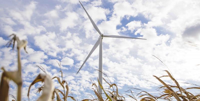 El parque eólico TimberRoadIV, que abastecerá de energía a Microsoft, producirá electricidad limpia equivalente al consumo de 36.000 hogares medios del estado de Ohio (EE.UU.).