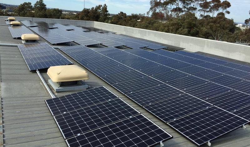 Placas fotovoltaicas en el campus Clayton de la Universidad de Monash
