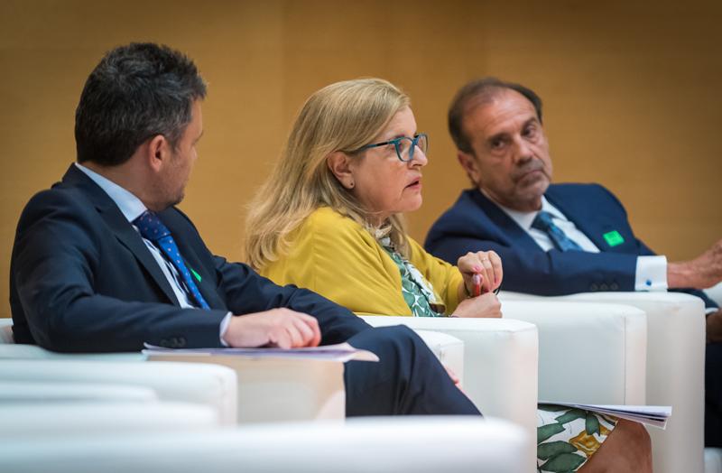 Mª Luisa Castaño, directora de energía del CIEMAT.
