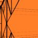 Un consorcio empresarial investiga nuevas tecnologías de prevención y detección de ciberataques en la red eléctrica