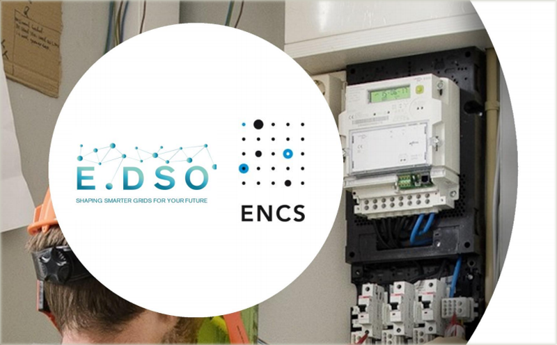 Portada del documento titulado 'Security requirements for procuring smart meters and data concentrators'
