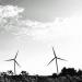 Firman un PPA para la adquisición de 26 GWh del parque eólico Carrecastro en Valladolid