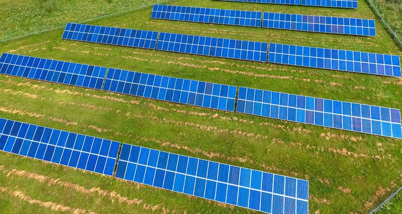 Paneles solares en un terreno con césped.