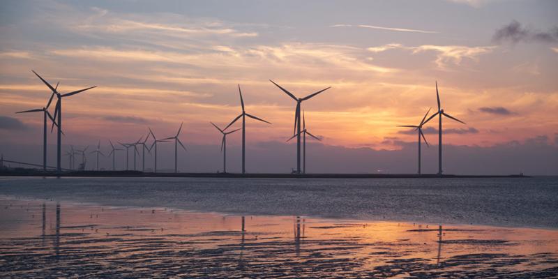 aerogeneradores en la costa