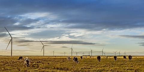 El complejo MacIntyre será el mayor parque eólico de Acciona en Australia con una capacidad de 1.026 MW