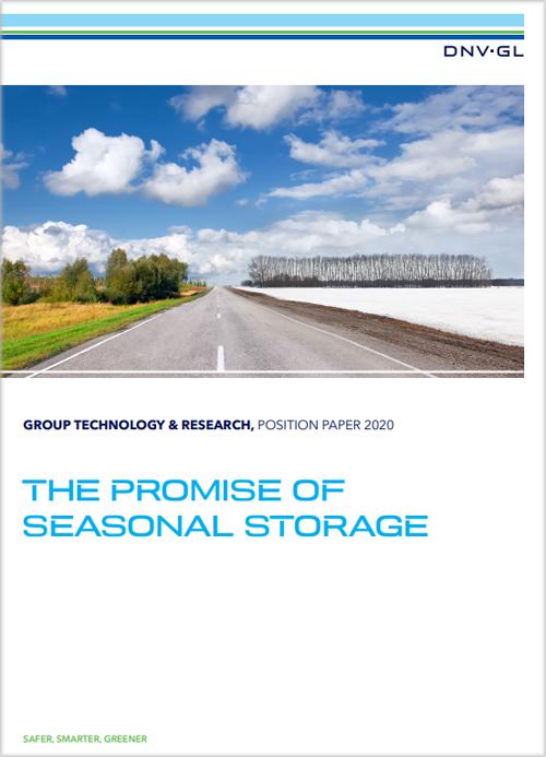 Portada del informe 'La promesa del almacenamiento estacional'