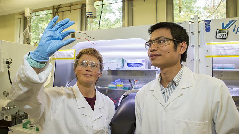 El equipo de ANU trabaja en el desarrollo de 'células solares en tándem', lo que implica apilar una célula solar de perovskita encima de una célula de silicio, o duplicarla para extraer más energía de la luz solar.