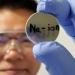 Investigadores de EE.UU. desarrollan una batería de iones de sodio viable