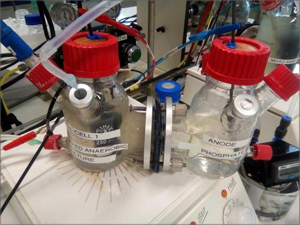 El reactor MES consiste en una celda tipo H de dos cámaras de vidrio separadas por una membrana de intercambio catiónico de Nafion N117.