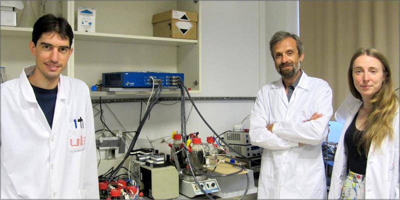 Los investigadores analizaron el efecto de un corte de suministro a largo plazo en un sistema de electrosíntesis microbiana (MES).