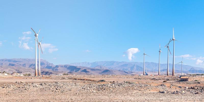 Econer ha adoptado medidas que ponen de manifiesto su compromiso con el medioambiente.