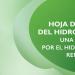 Hoja de Ruta del Hidrógeno: una apuesta por el hidrógeno renovable