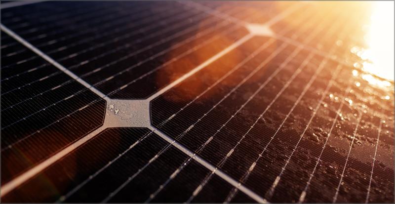Iberdrola y Bayer firman un contrato de compraventa de energía limpia.