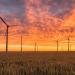 Más de la mitad de la energía producida en España en diciembre fue renovable