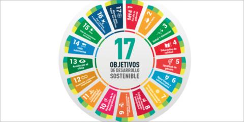 Smart Grids en el contexto de los objetivos de desarrollo sostenible y los derechos humanos: nuevos retos y desafíos para una transición justa
