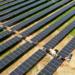 Comienza la construcción de tres plantas fotovoltaicas con una capacidad de 131 MWp en Cáceres
