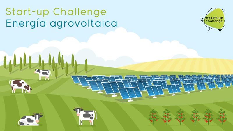 Start-up Challenge Iberdrola