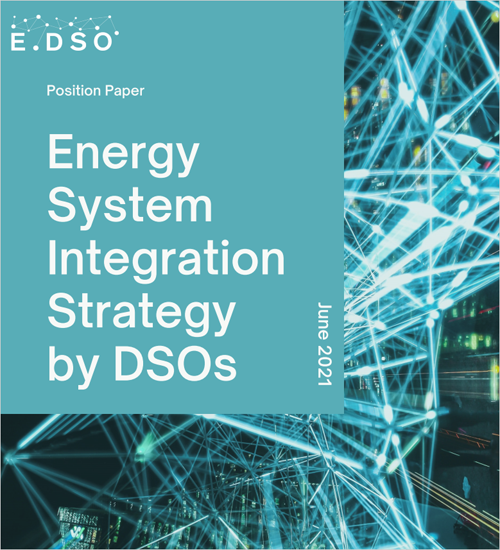 Energy Sustem Integration Strategy by DSOs