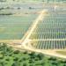 La planta fotovoltaica Valdesolar de 264 MW empieza a generar electricidad en Badajoz